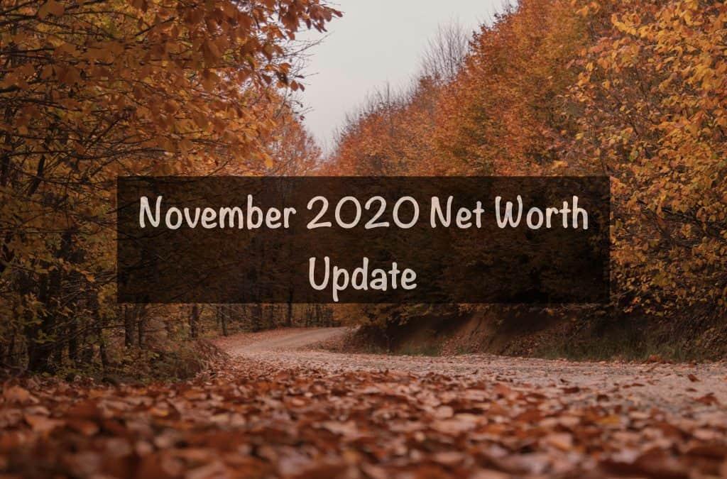 November 2020 Net Worth update