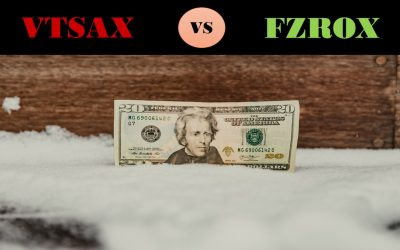 VTSAX vs FZROX, who is the best?